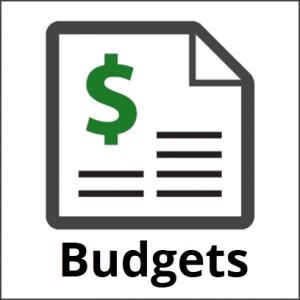 Village Budget Reports